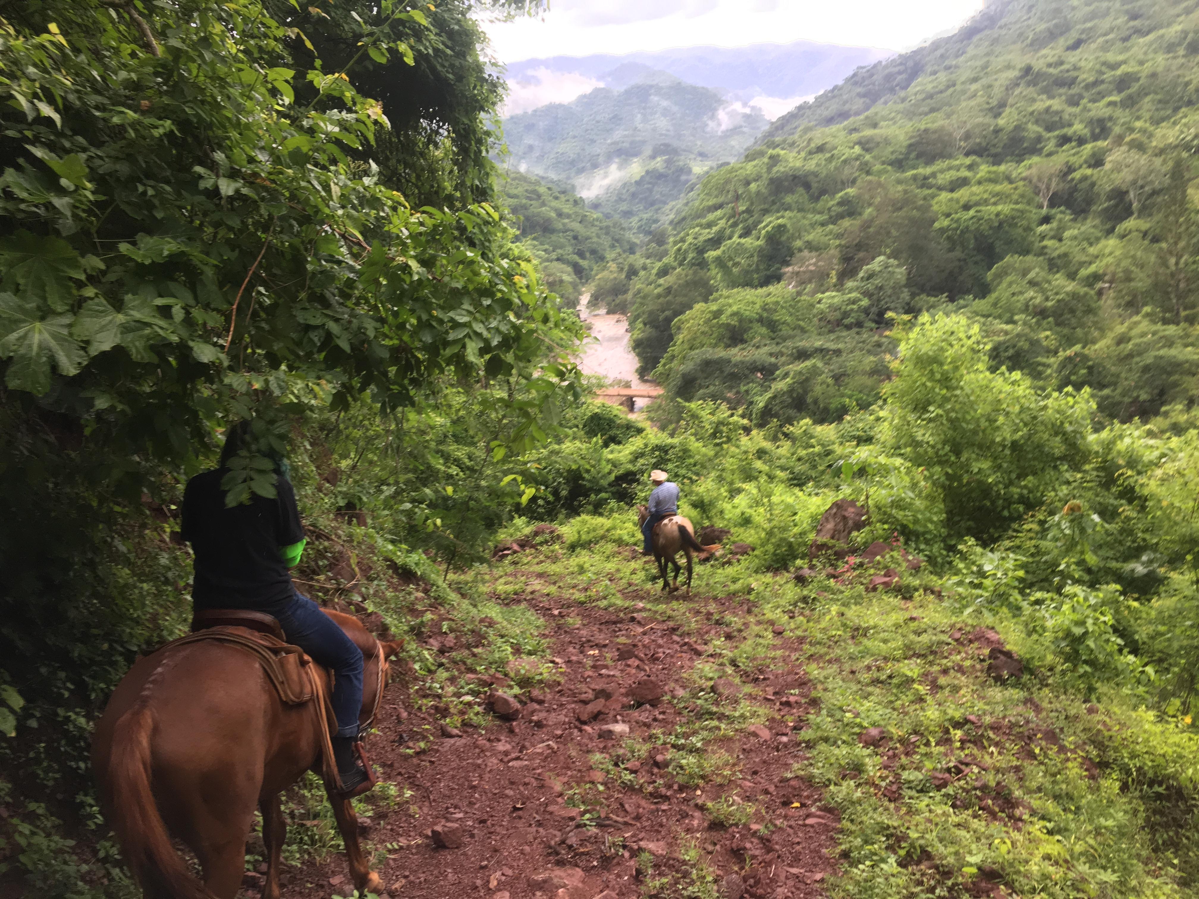 Horseback Riding From Puerto Vallarta