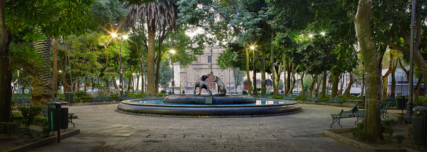 Estigo Private Tours Mexico City historic center tour + Templo mayor 2